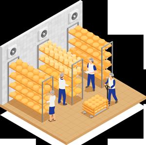 Ilustración cámara de depósito de quesos